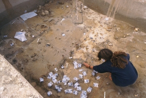 Excavation and plotting of worked flints and animal bones in 1995 (M Pitts)