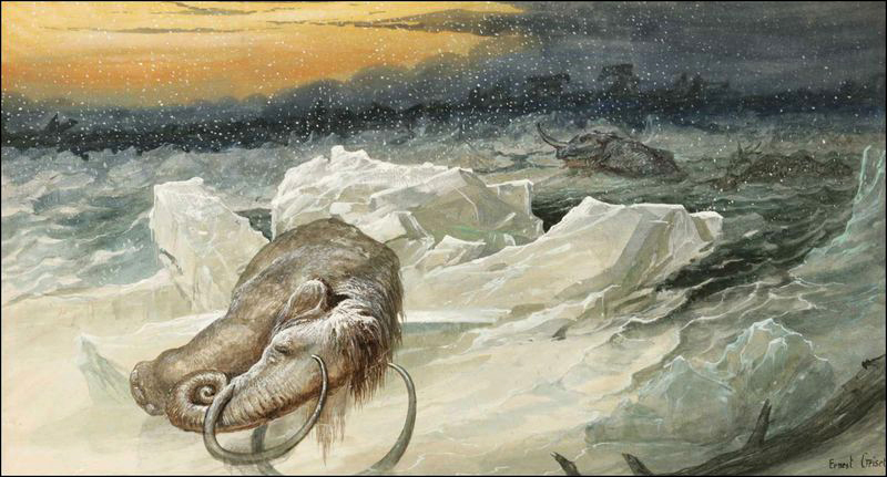 Dead mammoth on ice flow